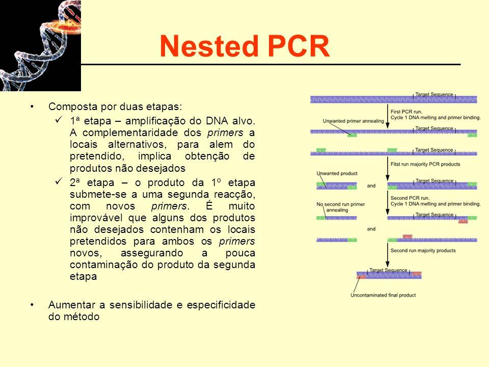 Nested PCR Composta por duas etapas: