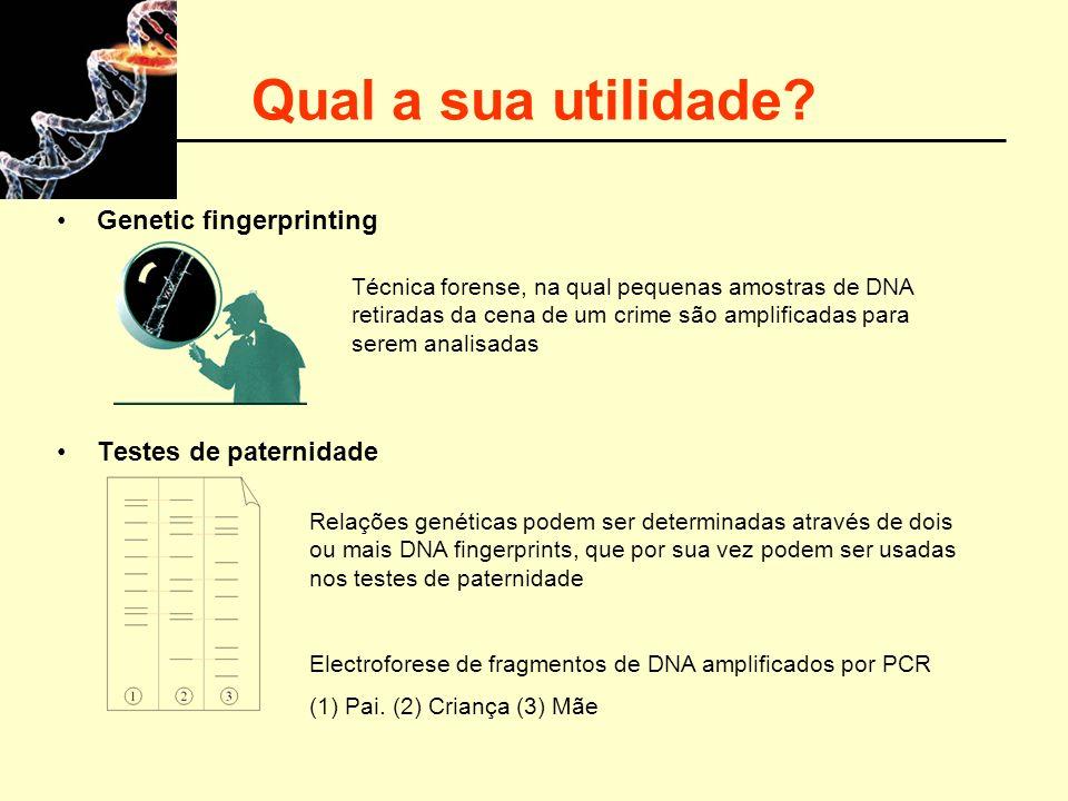 Qual a sua utilidade Genetic fingerprinting Testes de paternidade