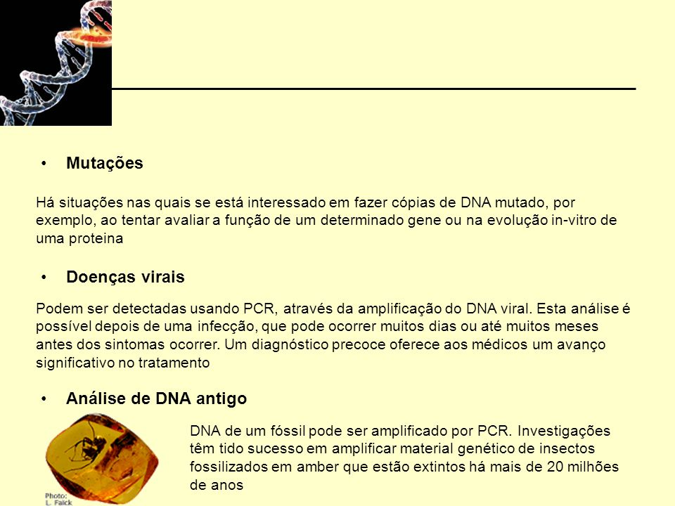 Mutações Doenças virais Análise de DNA antigo