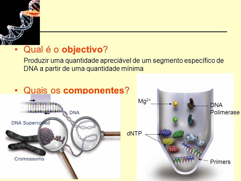 Qual é o objectivo Quais os componentes Mg2+ DNA Polimerase dNTP