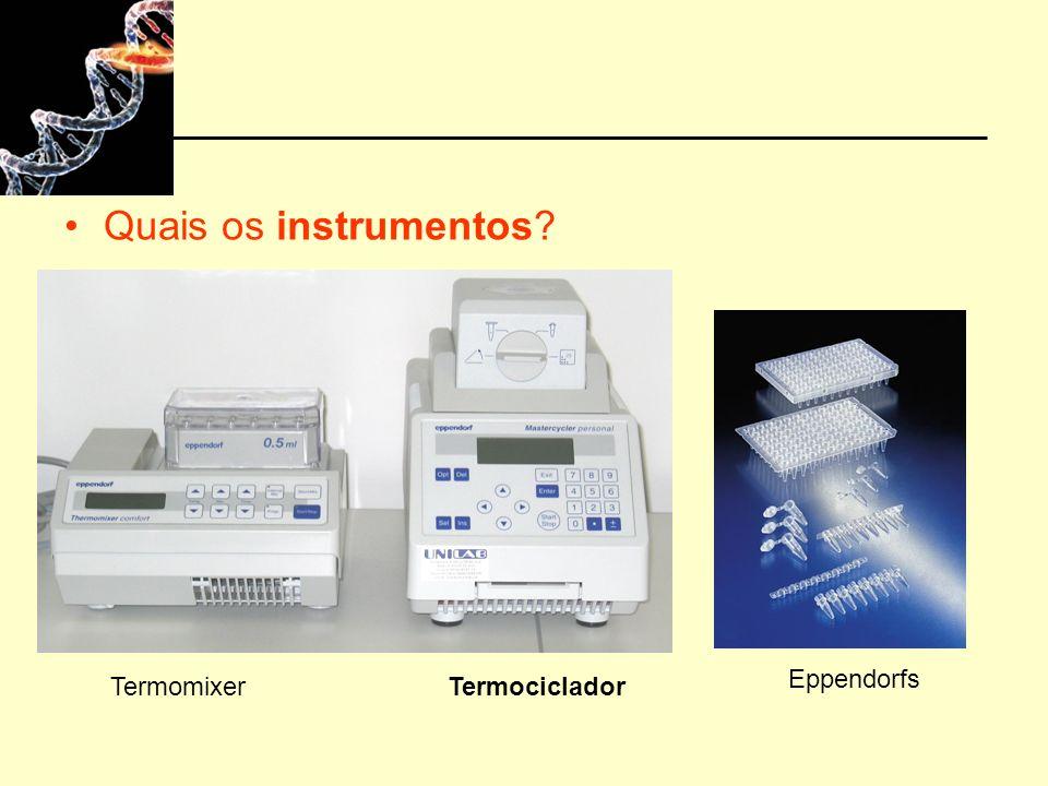 Quais os instrumentos Eppendorfs Termomixer Termociclador