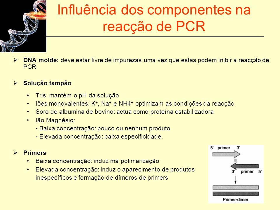 Influência dos componentes na reacção de PCR