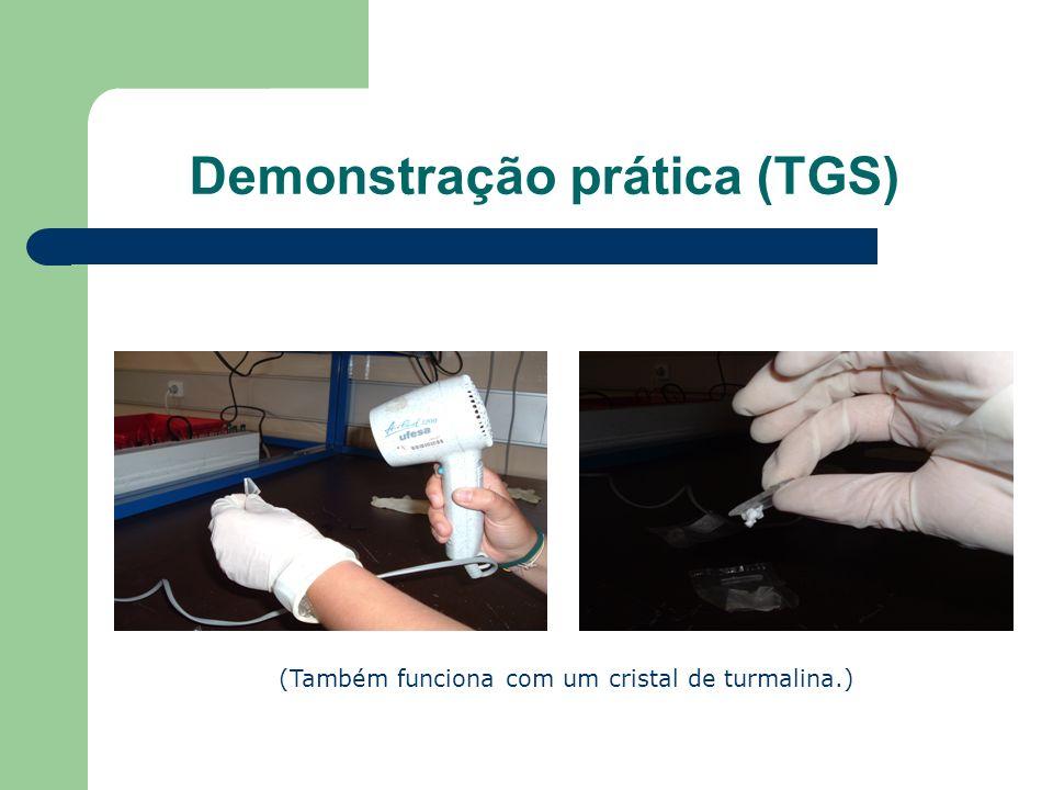 Demonstração prática (TGS)