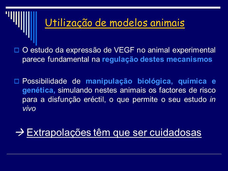 Utilização de modelos animais