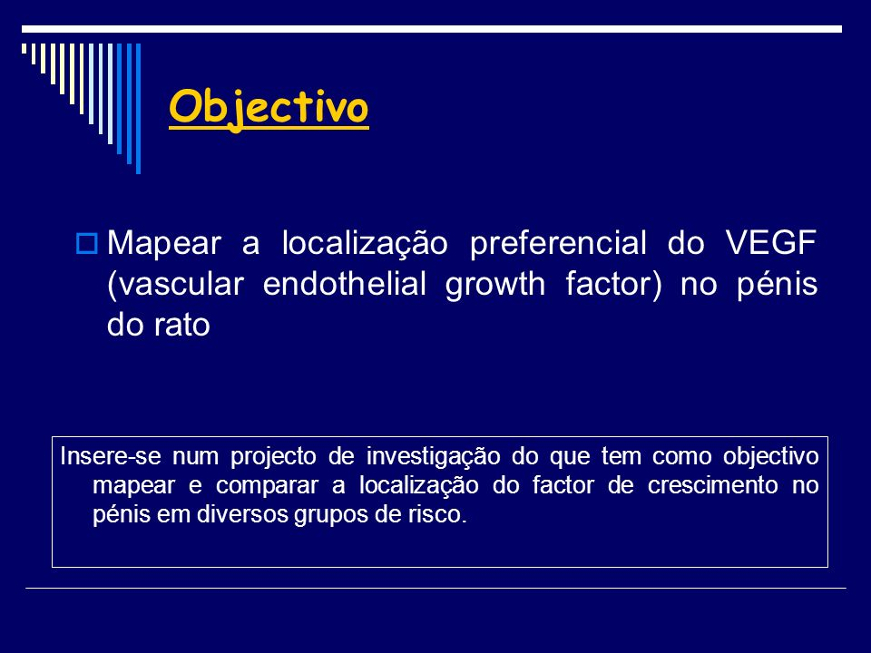 Objectivo Mapear a localização preferencial do VEGF (vascular endothelial growth factor) no pénis do rato.