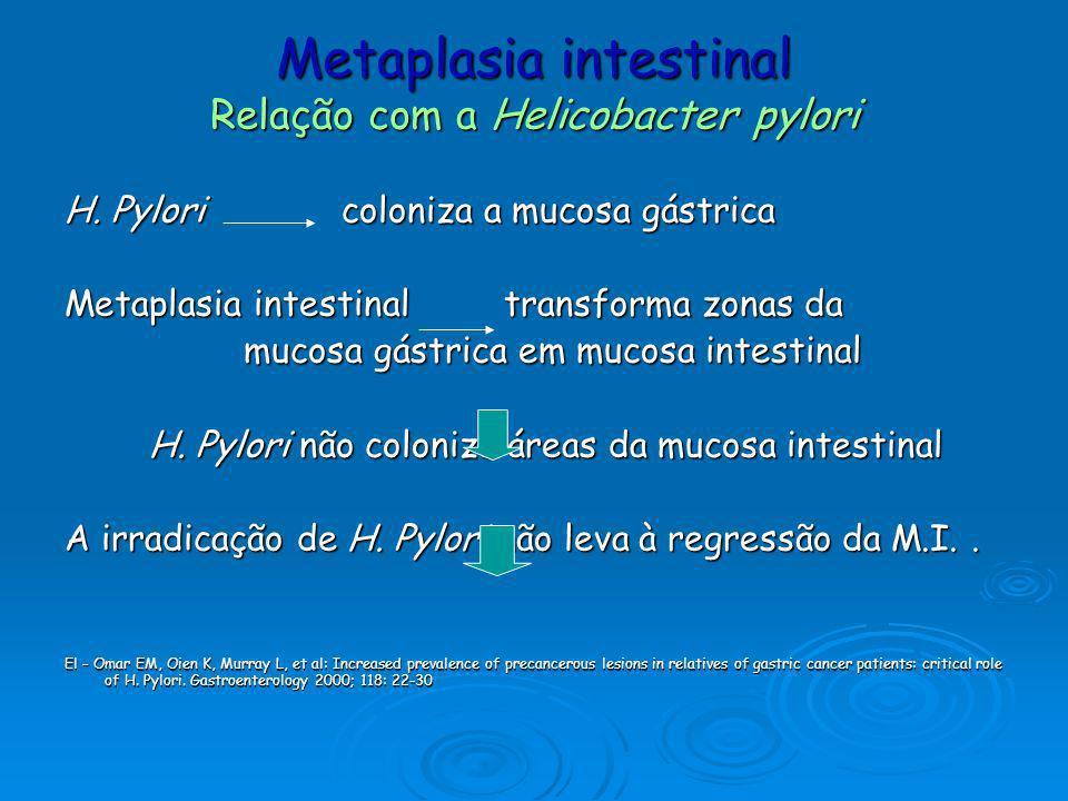 Metaplasia intestinal Relação com a Helicobacter pylori