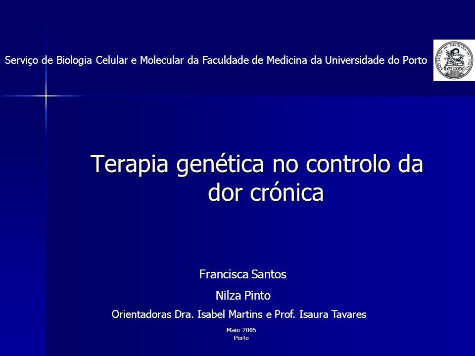 Terapia genética no controlo da dor crónica