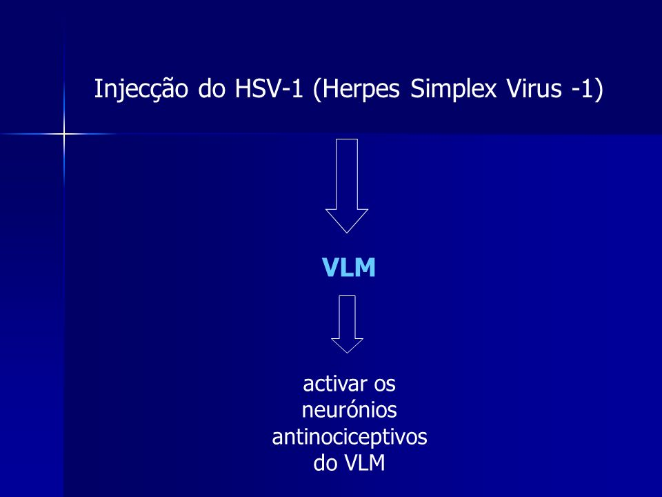 Injecção do HSV-1 (Herpes Simplex Virus -1)
