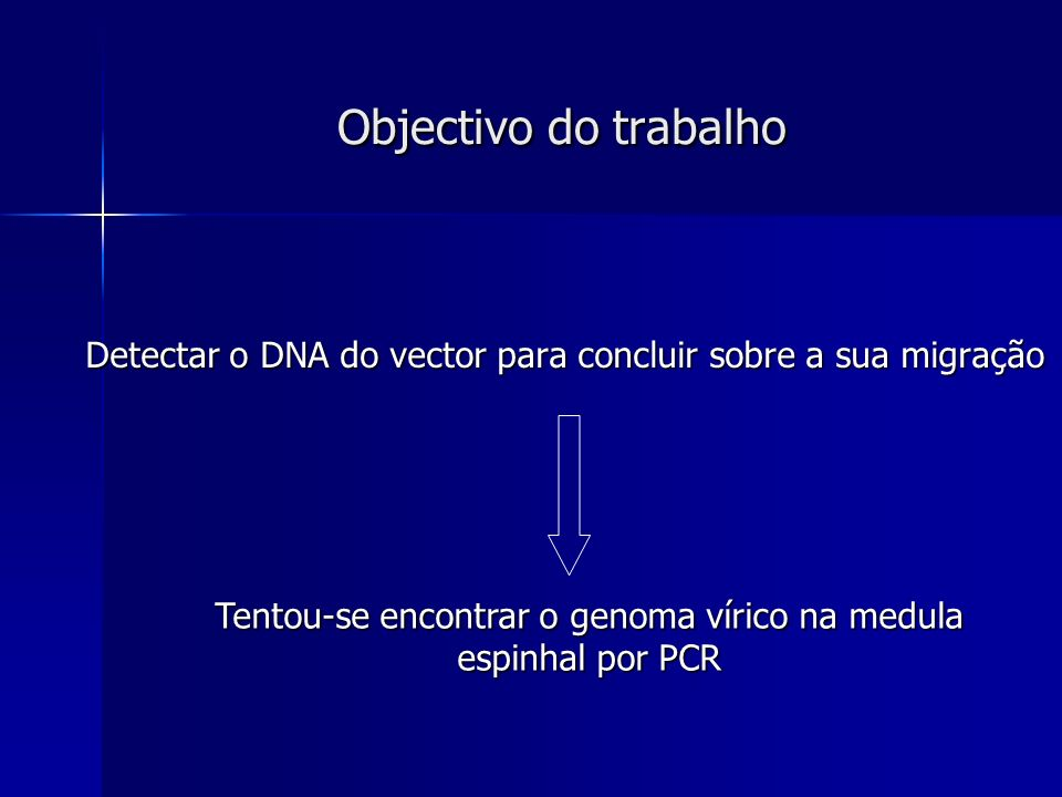 Tentou-se encontrar o genoma vírico na medula espinhal por PCR