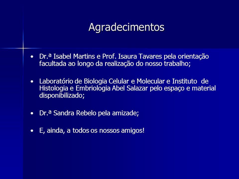 Agradecimentos Dr.ª Isabel Martins e Prof. Isaura Tavares pela orientação facultada ao longo da realização do nosso trabalho;