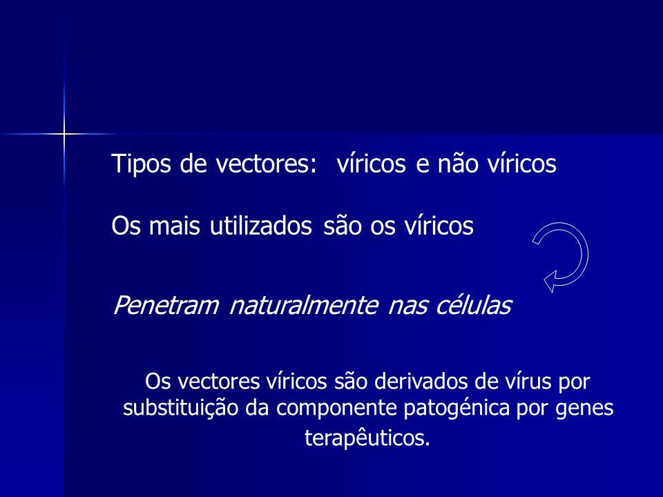 Tipos de vectores: víricos e não víricos