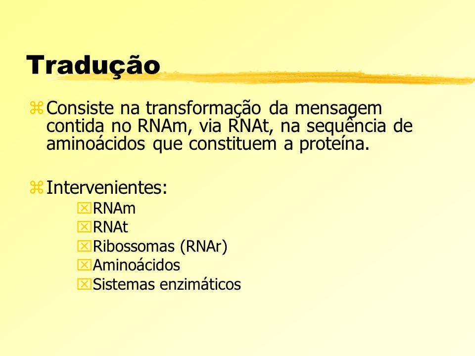 Tradução Consiste na transformação da mensagem contida no RNAm, via RNAt, na sequência de aminoácidos que constituem a proteína.