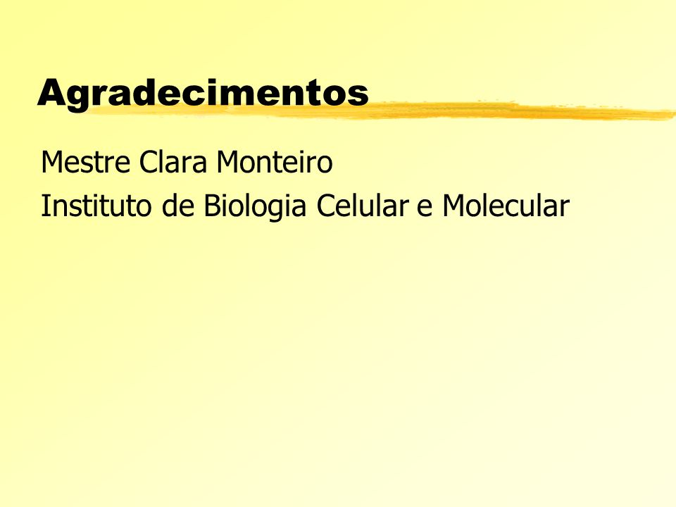 Agradecimentos Mestre Clara Monteiro