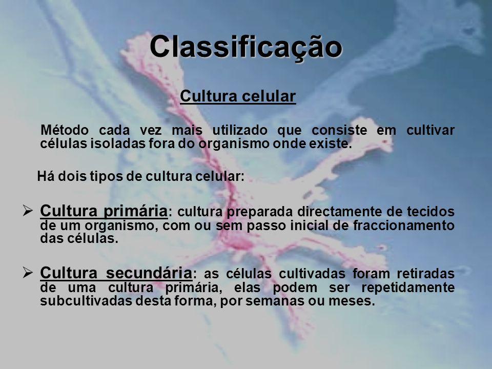 Classificação Cultura celular