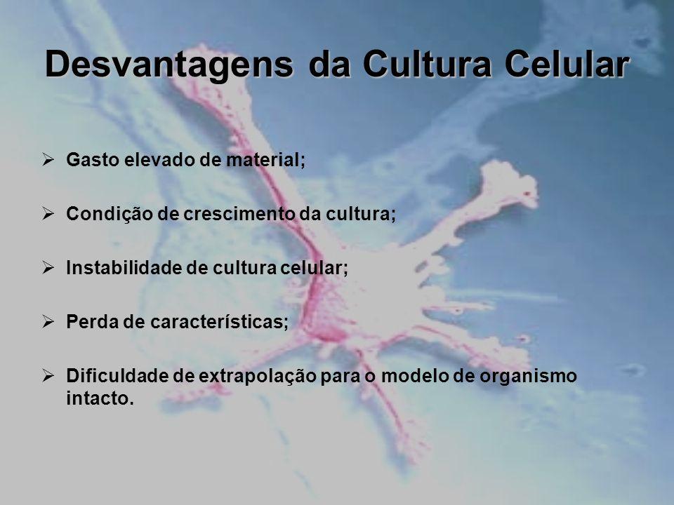 Desvantagens da Cultura Celular