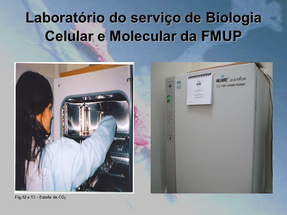 Laboratório do serviço de Biologia Celular e Molecular da FMUP