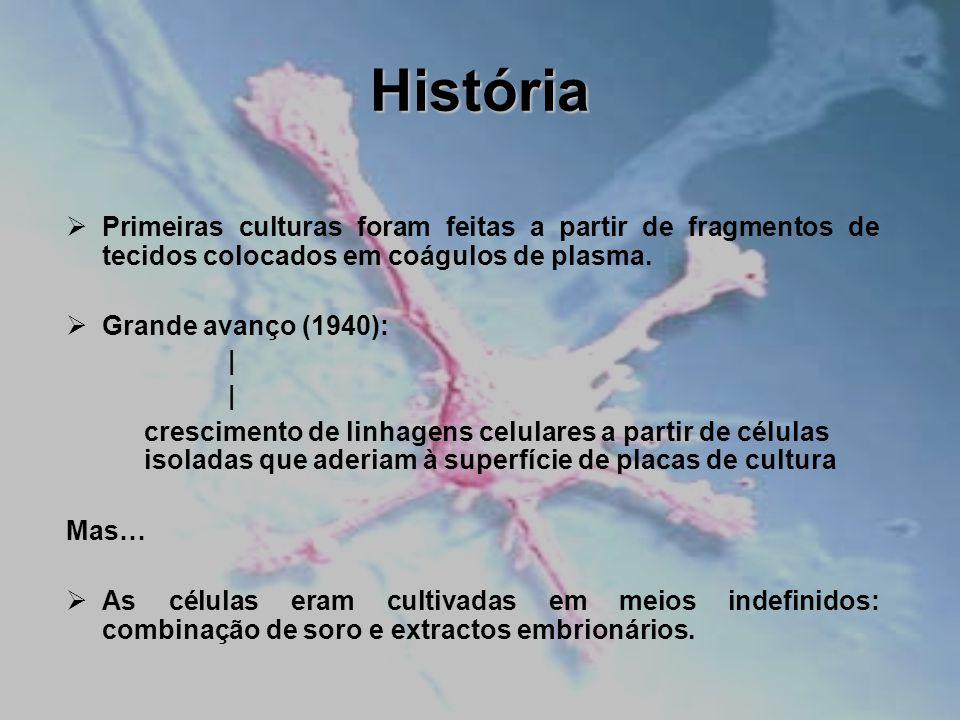 História Primeiras culturas foram feitas a partir de fragmentos de tecidos colocados em coágulos de plasma.