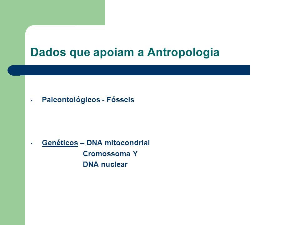 Dados que apoiam a Antropologia