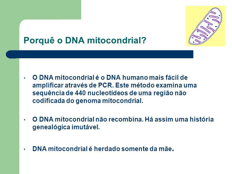 Porquê o DNA mitocondrial