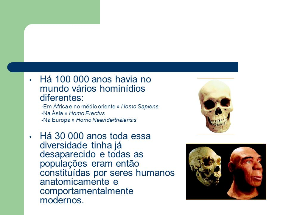 Há 100 000 anos havia no mundo vários hominídios diferentes: