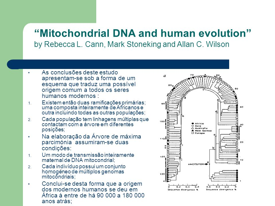 Mitochondrial DNA and human evolution by Rebecca L