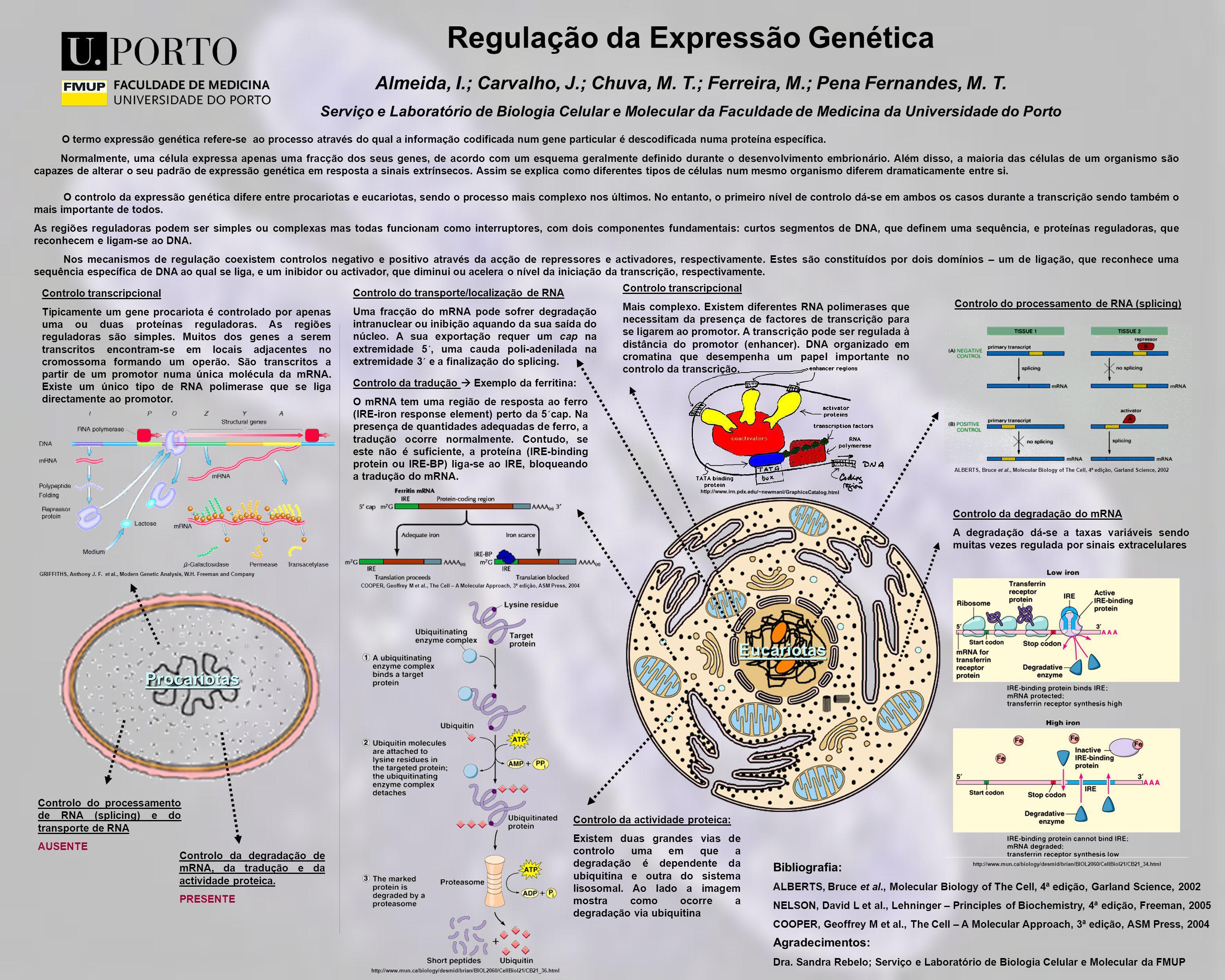 Regulação da Expressão Genética