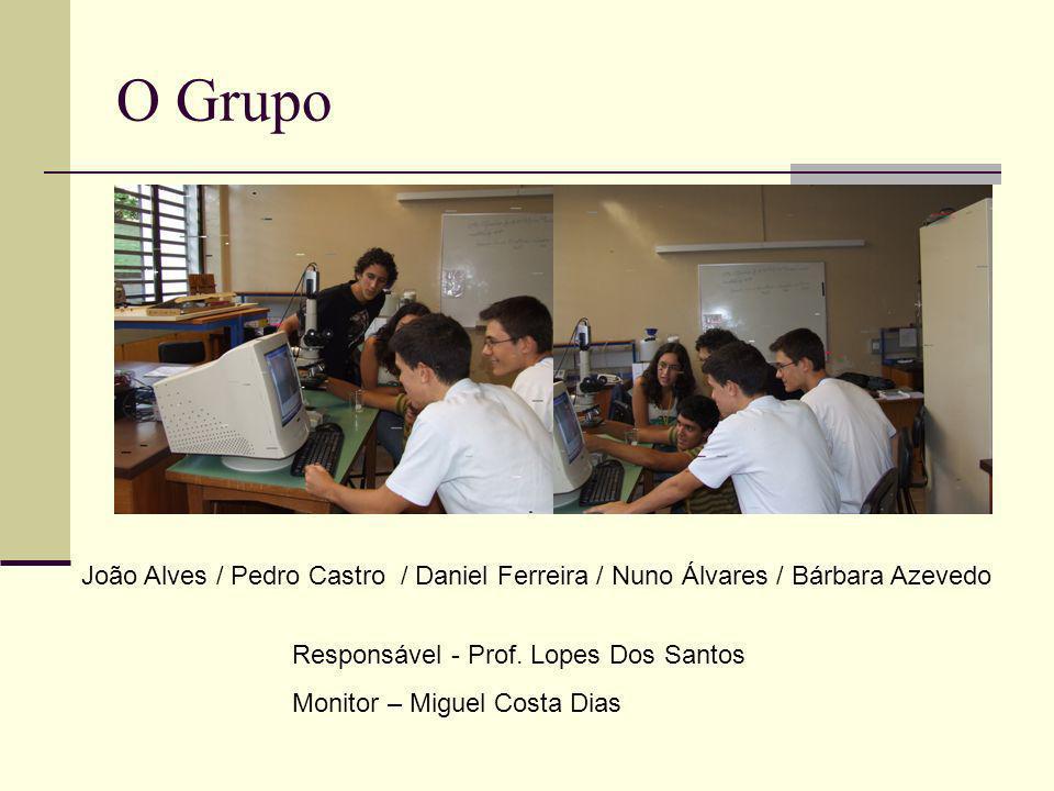O Grupo João Alves / Pedro Castro / Daniel Ferreira / Nuno Álvares / Bárbara Azevedo. Responsável - Prof. Lopes Dos Santos.