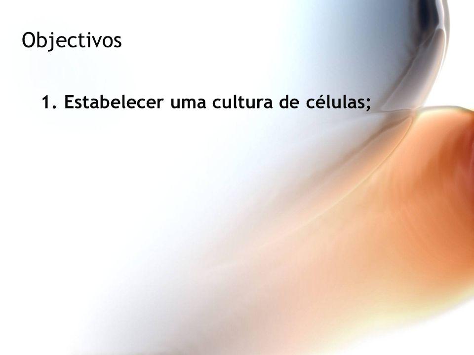 Objectivos Estabelecer uma cultura de células;
