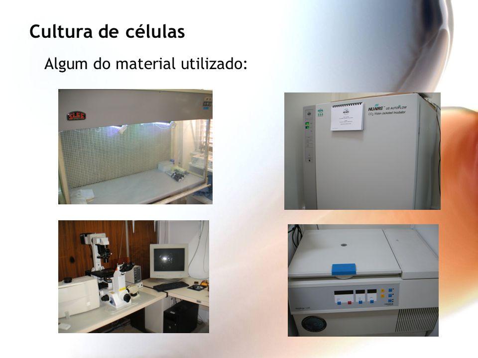 Cultura de células Algum do material utilizado: