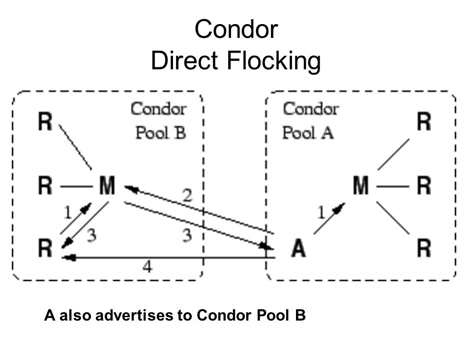 Condor Direct Flocking