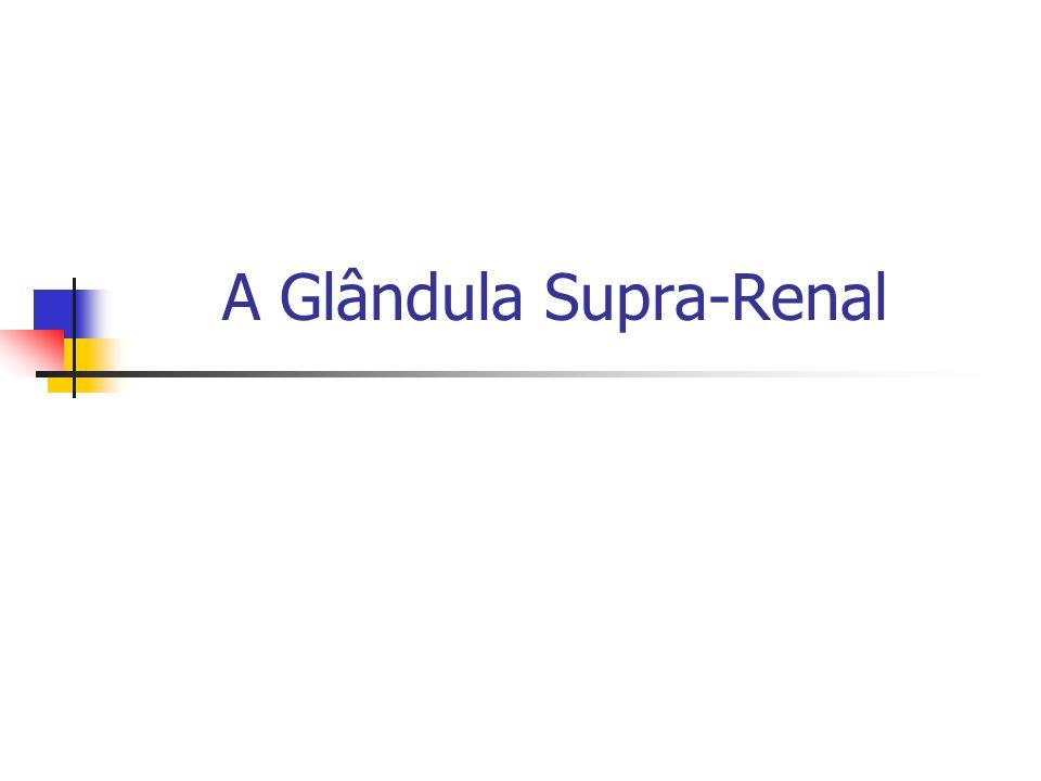 A Glândula Supra-Renal