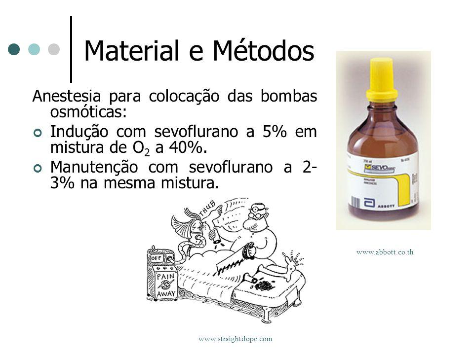 Material e Métodos Anestesia para colocação das bombas osmóticas: