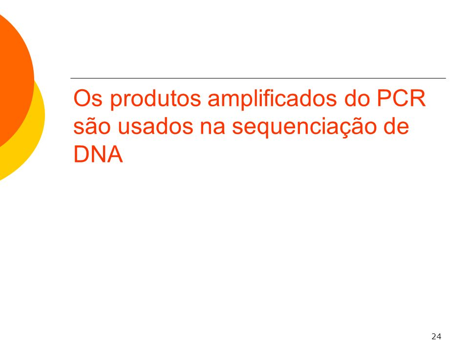 Os produtos amplificados do PCR são usados na sequenciação de DNA