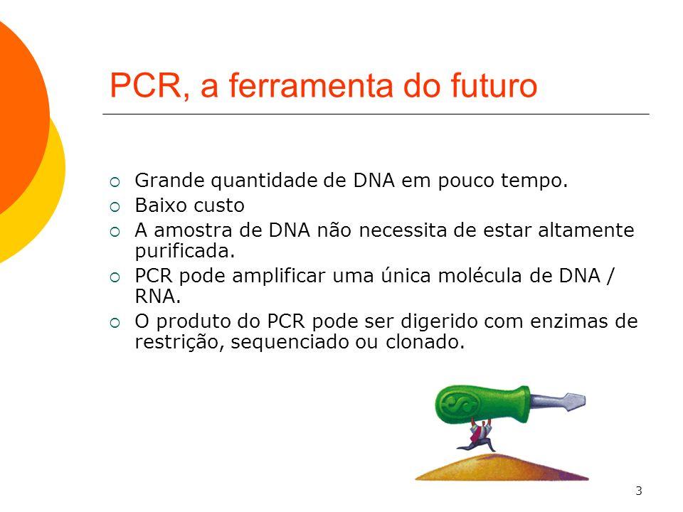 PCR, a ferramenta do futuro