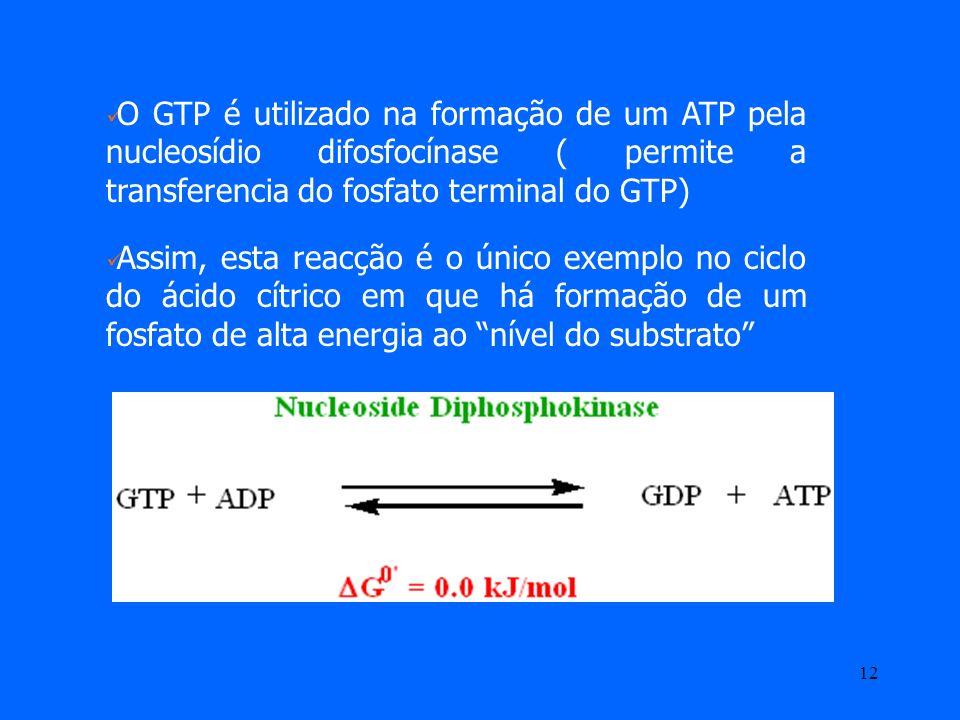 O GTP é utilizado na formação de um ATP pela nucleosídio difosfocínase ( permite a transferencia do fosfato terminal do GTP)