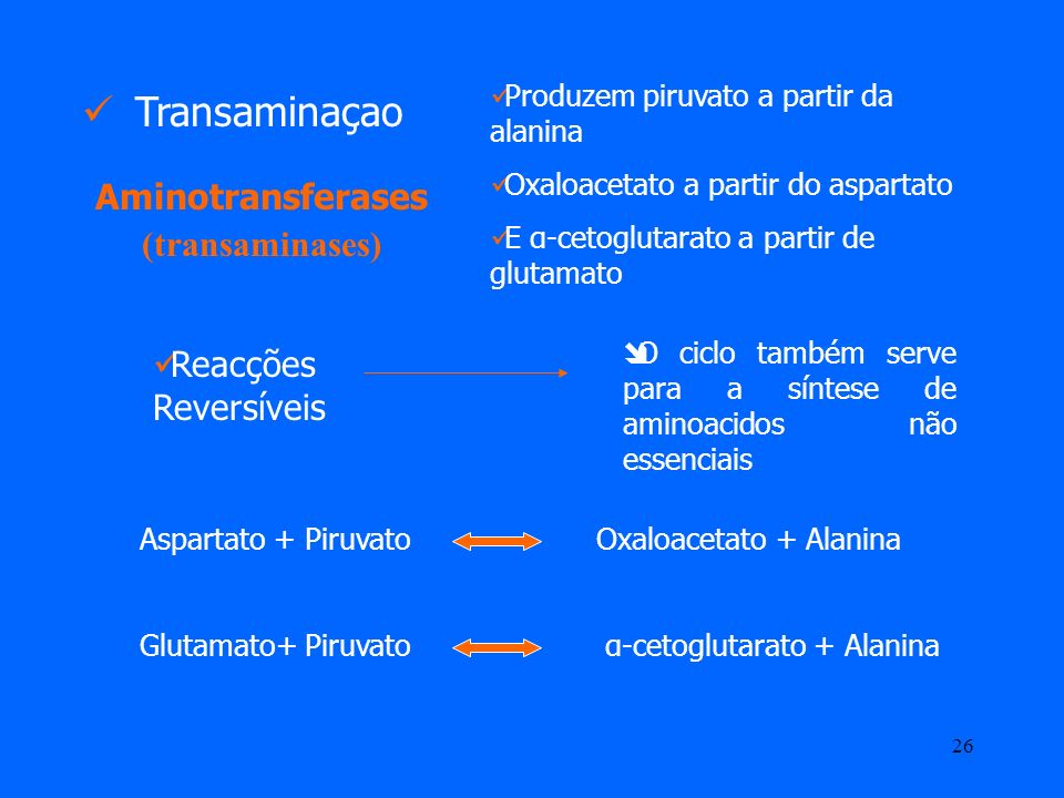 Aminotransferases (transaminases)