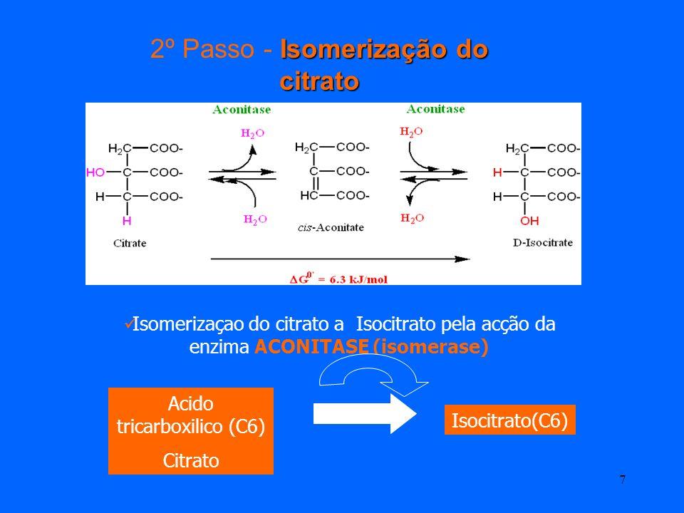 2º Passo - Isomerização do citrato