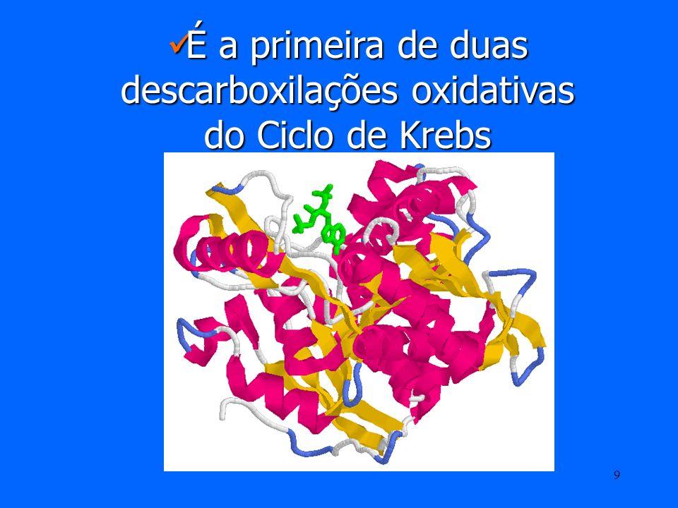 É a primeira de duas descarboxilações oxidativas do Ciclo de Krebs