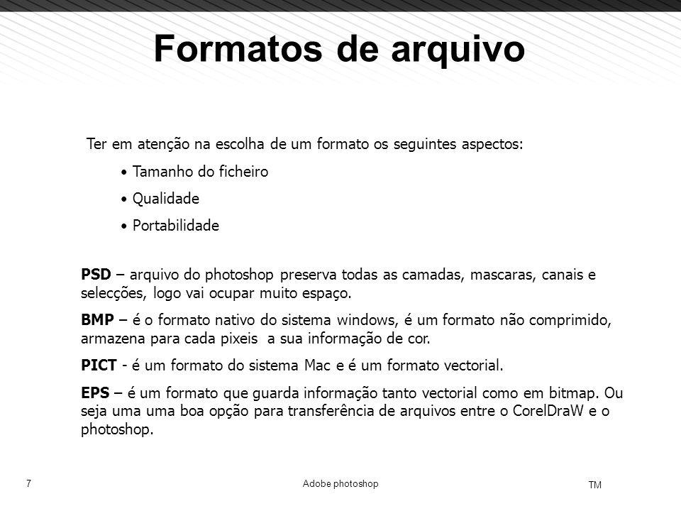 Formatos de arquivo Ter em atenção na escolha de um formato os seguintes aspectos: Tamanho do ficheiro.