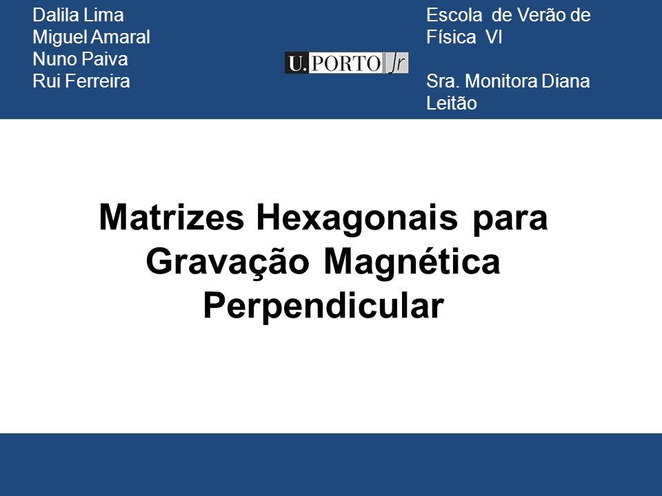 Matrizes Hexagonais para Gravação Magnética Perpendicular