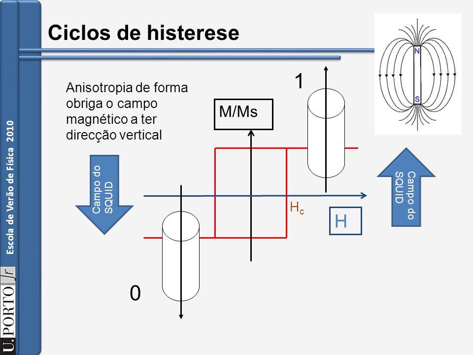 Ciclos de histerese 1 H M/Ms