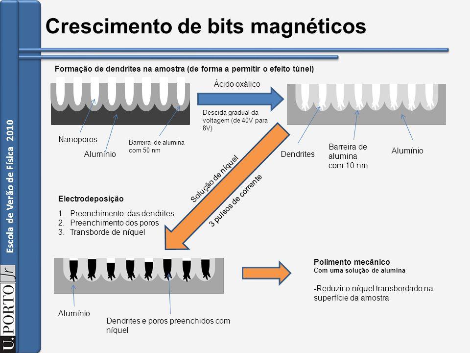 Crescimento de bits magnéticos