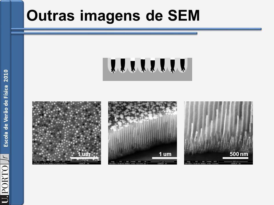 Outras imagens de SEM 1 um 1 um 500 nm