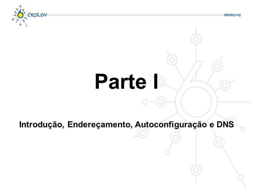 Introdução, Endereçamento, Autoconfiguração e DNS
