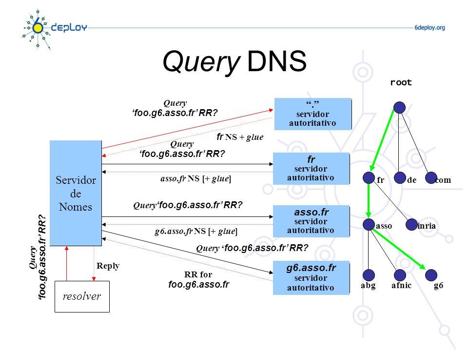 Query DNS Servidor de Nomes resolver . fr asso.fr g6.asso.fr