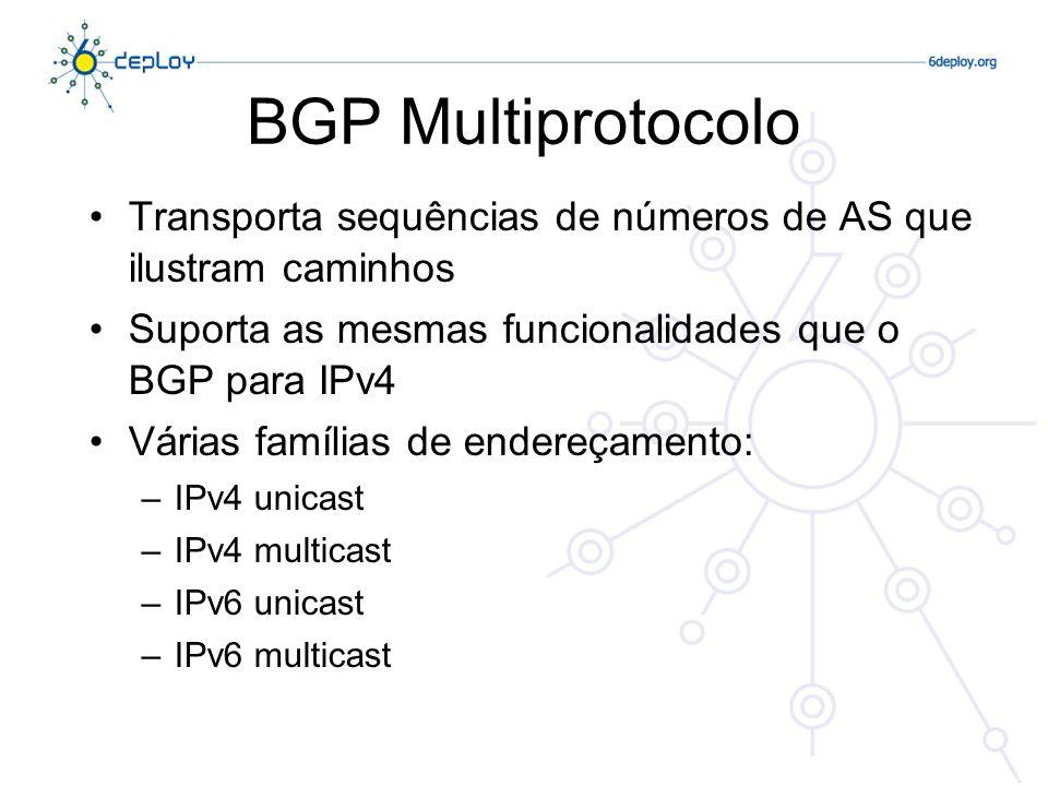 BGP MultiprotocoloTransporta sequências de números de AS que ilustram caminhos. Suporta as mesmas funcionalidades que o BGP para IPv4.