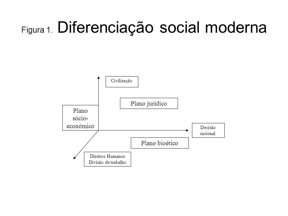 Figura 1. Diferenciação social moderna