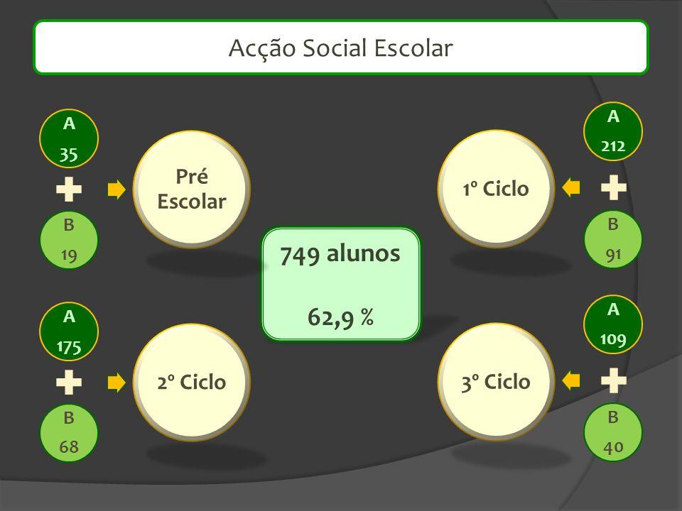 Acção Social Escolar 749 alunos 62,9 % Pré Escolar 1º Ciclo 2º Ciclo