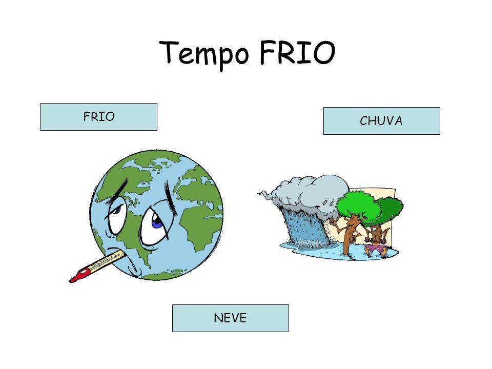 Tempo FRIO FRIO CHUVA NEVE