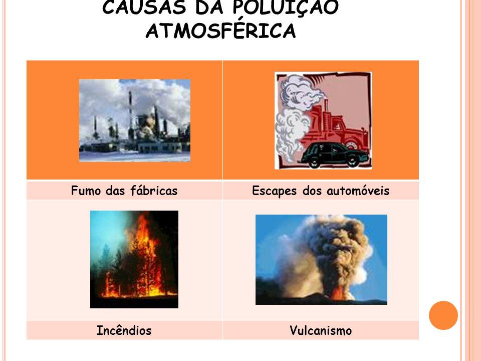 CAUSAS DA POLUIÇÃO ATMOSFÉRICA
